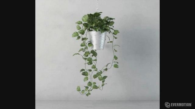 Mod liser une plante r aliste sous 3ds max for Ventes de plantes par internet