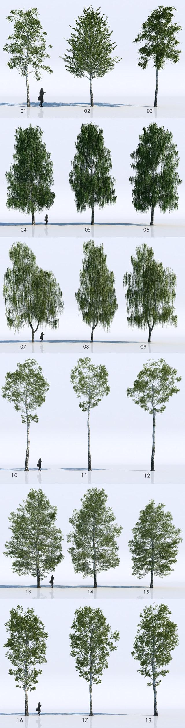 Extrêmement VizPeople : 18 arbres 3D gratuits pour 3ds Max et V-Ray - 3DVF.com EW57