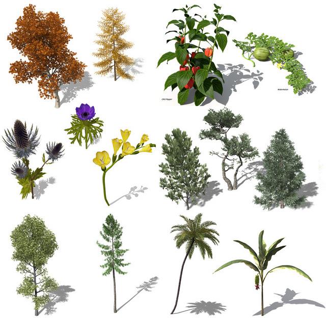 130 mod u00e8les de plantes gratuits chez xfrog