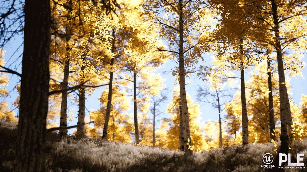 Paysage procédural sous Unreal Engine, par Gokhan Karadayı - 3DVF com