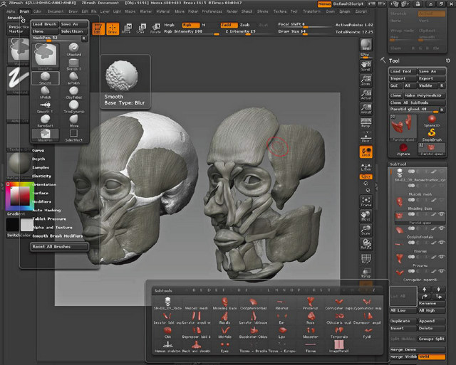 ZBrush - reconstruction faciale