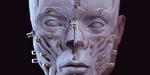 Reconstruction d'un visage, par Philippe Froesch