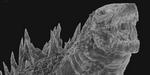 MPC : VFX Breakdown du film Godzilla