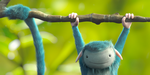Blue Monkey, par Thales Simonato