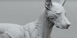 Webinar Gnomon gratuit sur l'anatomie des créatures, le 25 juillet