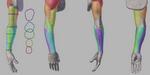 Anatomie du bras, par Lucas Falcao