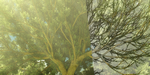 Addon Blender : The Grove passe en version 2
