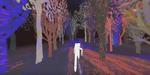 Jusqu'ici, une marche en forêt et en réalité virtuelle par Vincent Morisset