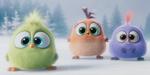 Angry Birds : un spot spécial Noël