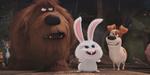 Comme des bêtes : nouvelle bande-annonce