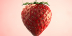 Strawberry Candy, projet personnel de Giulio Tonini