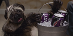 Super Bowl : Puppymonkeybaby, pour Mountain Dew