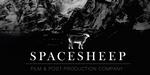 Spacesheep présente son nouveau site