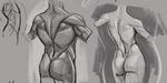 Cours de dessin sur l'anatomie humaine, par Aaron Blaise