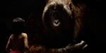 Nouvelle bande-annonce du Livre de la Jungle