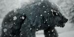 NeoFur : cheveux, fourrure et fibres sous Unreal Engine 4