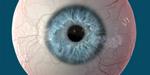 SIGGRAPH 2016 : Disney Research améliore la capture des yeux
