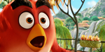 Trois breakdowns pour Angry Birds