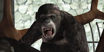 FxGuide : retour sur la prévis de Rise of the Planet of the Apes