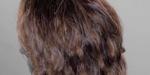 Shading réaliste de cheveux avec Arnold et Maya
