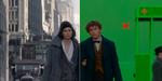 Les Animaux fantastiques : images avant/après et making-of vidéo