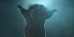 Mikros Image : un concert de marmottes pour la fin d'année de France 3