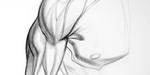 Dessin et anatomie d'un bras humain
