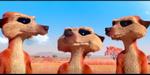 Catch It : des suricates et un vautour dans un court de l'ESMA
