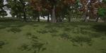 Paysages naturels et feuillage sous Unreal Engine : comment débuter