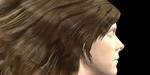 Recherche : capture des coiffures réelles avec paramètres de simulation physique