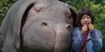 Okja : une bande-annonce pour le film de Bong Joon Ho
