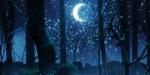 Proxima B, court nocturne de Marie Larrivé