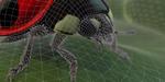 The Mill revient sur sa démo temps réel d'insectes sous Xbox One X