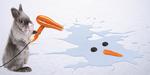 Créer une carte de Noël avec Adobe Stock et InDesign CC