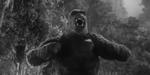 Nostalgie : retour sur les incarnations de King Kong, de 1933 à 2005