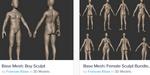 Modèles humains : des meshes de base gratuits à télécharger