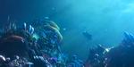 Or Bleu : un court de l'ESMA met en scène deux pêcheurs de coraux
