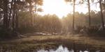 Crytek dévoile une démo technique et un nouveau modèle économique pour le CryEngine