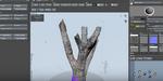 SpeedTree : un workflow de photogrammétrie en approche