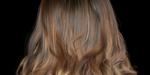 Ornatrix : des cheveux ondulés avec la future version 2