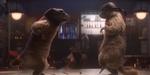 Des marmottes cinéphiles pour France 3, par  Mikros MPC Advertising