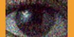 """Recherche : le machine learning pour débruiter des images sans données """"propres"""""""