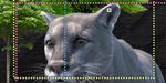 SIGGRAPH 2018 : Trois présentations autour du traitement d'images
