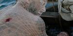Brainstorm Digital revient sur les effets du film Papillon