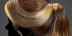 Apprenez à créer des coiffures avec Maya et XGen