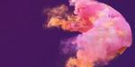 Comment créer de la fumée colorée sous Houdini 17