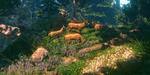 FlowScape : des paysages naturels entre dessin et outils 3D