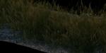 Faire pousser des plantes sous Blender