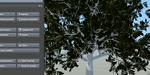 Speedtree : un tutoriel pour débuter avec l'outil de végétation