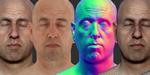 Une tête humaine scannée à télécharger gratuitement